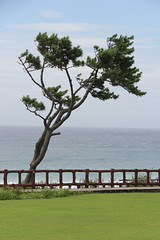 Corée - Jeju