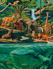 The Creation - Living Creatures