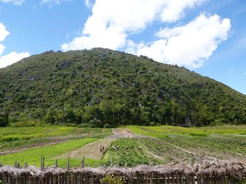 Papua13-Wamena Nord-Wosilimo (67)
