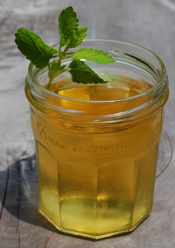 Lemon balm cooler by Eve Fox, Garden of Eating blog, copyright 2013