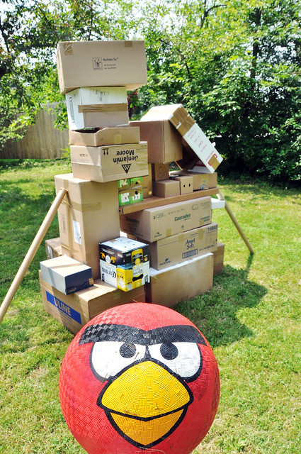 angry birds 3D