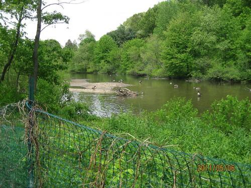 Image of Lake Whetstone