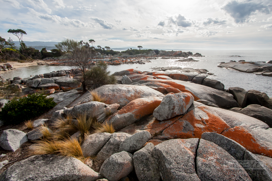 Scenery from 'Binalong Bay' in the 'Bay of Fires'.