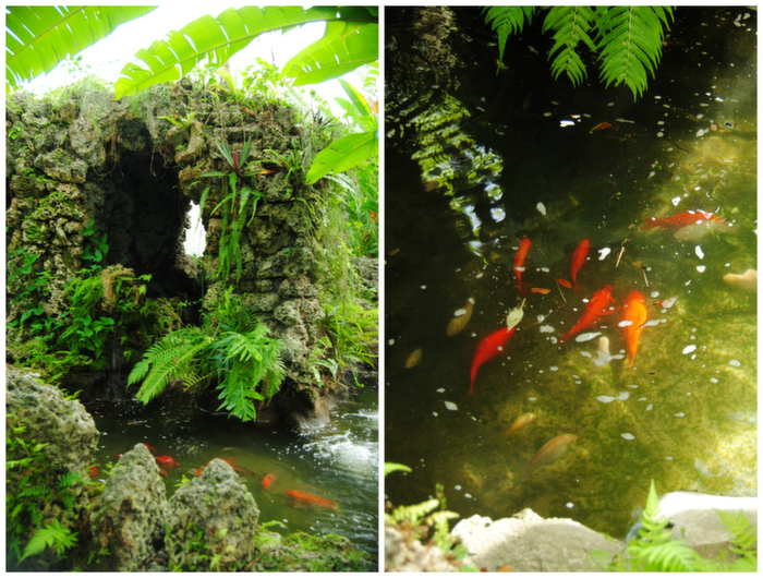 merrick_house_koi_pond_tropical_coral_rock_garden
