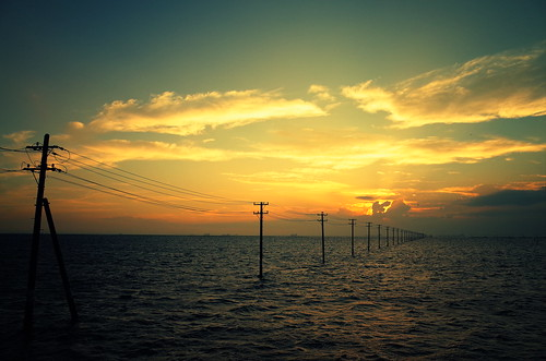 sunset scene with utility poles