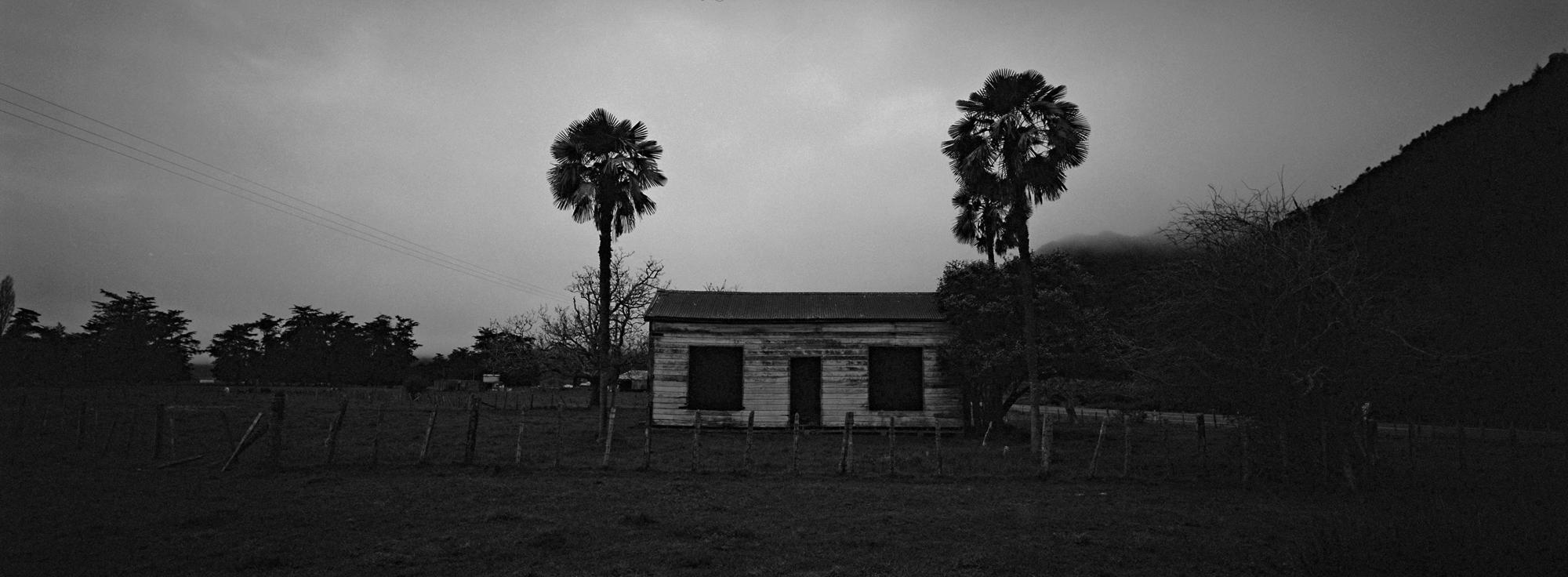 The Palms (Xpan)
