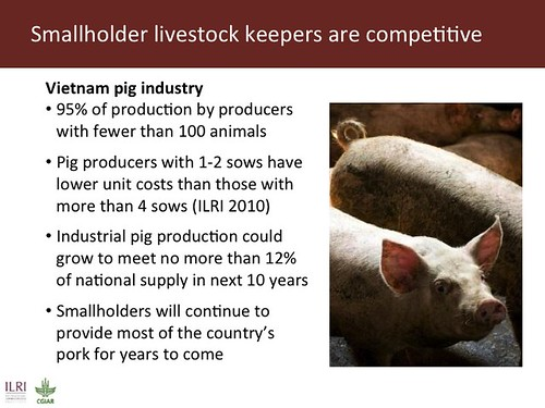 Smallholder livestock keepers are competitive