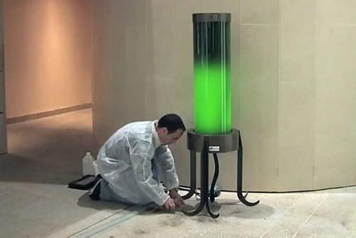 Лампа с микроводорослями поглощает СО2 из воздуха в гостиной