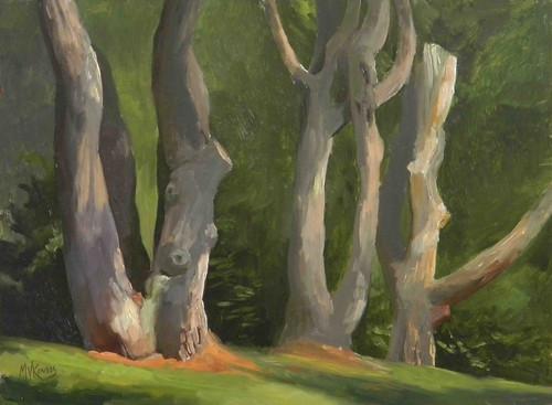 White Pines 9