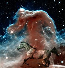 Horsehead Nebula Fantasy