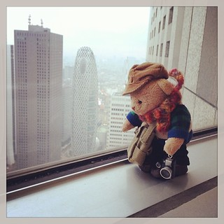 #tb365bear #teddybear on the 55th floor