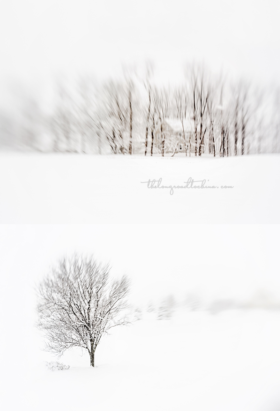 Lensbaby Winter Scenes