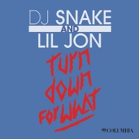 DJ Snake & Lil Jon – Turn Down For What