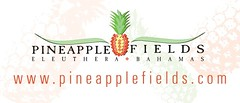Pineapple Fields - top resort
