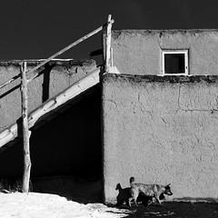 Taos Pueblo No. 32