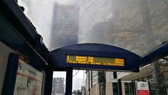 No 1 bus stop: 6 and 37 on Albert Street no more