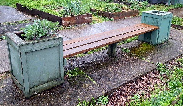 Hand Made Bench in a Garden at a Catholic Church