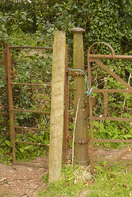 Bartestree - old iron, Panasonic DMC-TZ6