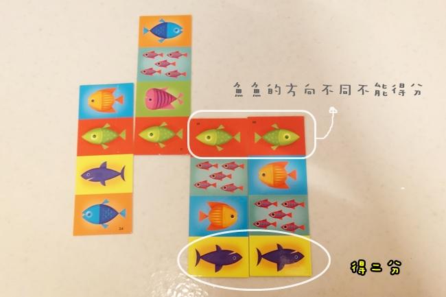 魚魚對對樂 (2).JPG