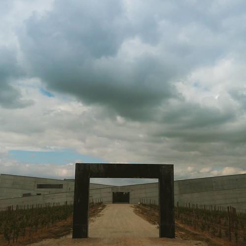 #vinhos #vinhas #adega Quinta da Teixuga, Caminhos Cruzados...