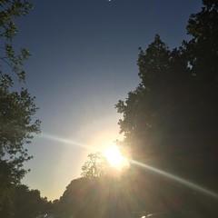 1 May 2017 #sunset #samespotforayear #nofilter #vsocam #sunsetporn