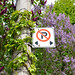 no parking in the lilacs