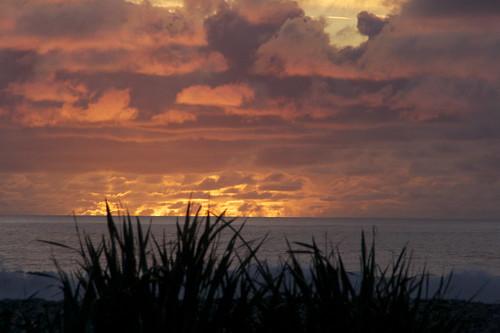 ocean light sunset sea newzealand cloud beach canon landscape coast phormium westcoast harakeke phormiumtenax rapahoe
