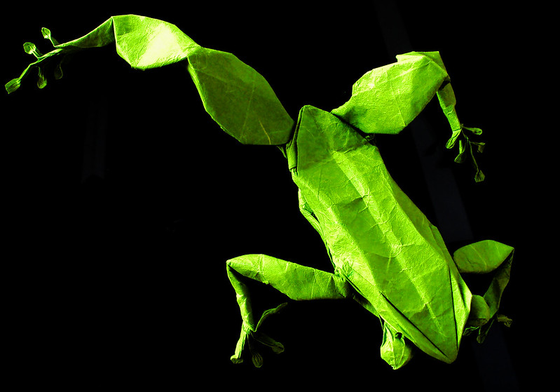 Tree Frog by Robert Lang, folded by me