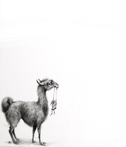 Adonna Khare, Alpaca_Khare