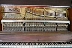 celesta, piano, musical keyboard, keyboard, harpsichord, player piano,