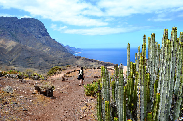 Descending to Puerto de las Nieves, Gran Canaria