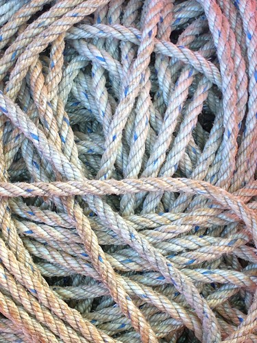 Twisted by Damian Gadal