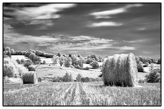 2013-07-25 -DSC_2638-France wide open spaces
