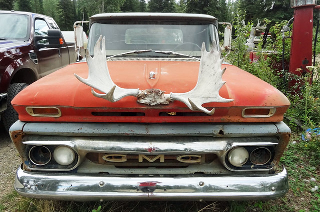 moose-antler-truck