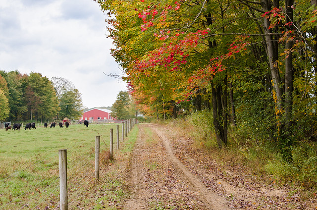 20131006-Farm-Visit-0773