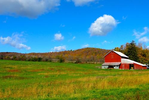 barn farm hills fallfoliage foliage onondagany