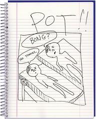 pot81