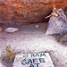 Gram Parsons, Safe At Home by Herschell Hershey