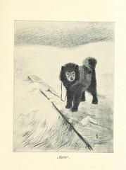 """British Library digitised image from page 103 of """"In Nacht und Eis. Die norwegische Polarexpedition 1893-1896 ... Mit einem Beitrag von Kapitän Sverdrup, etc. (Supplement. Wir Framleute. Von Bernhard Nordahl. Nansen und ich auf 86° 14′. Von Hjalmar Johans"""
