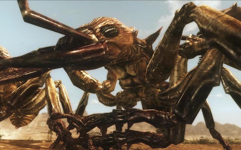 Fallout Screenshots XIV - Page 6 11428627155_6bb4179855_c