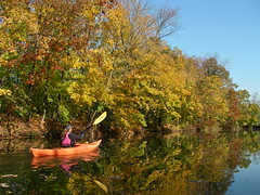 Tuesday kayak tours in New Jersey ranging from Easy to