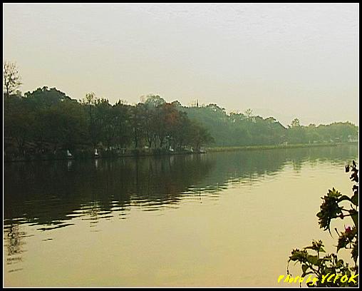 杭州 西湖 (其他景點) - 679 (北山路湖畔 孤山公園內 拍攝婚紗相)