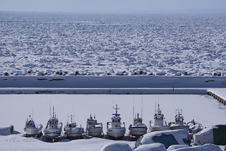Frozen in Winter Time 流氷と船
