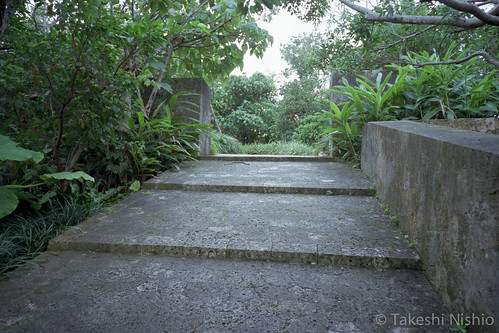手前勾配のついた階段 / sloped step