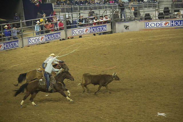 Rodeo and Concert2_28