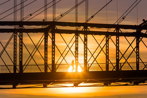 sunset cincinnati roeblingbridge bridge silhouette covington kentucky unitedstates us