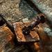 The Rusted Nail by Katrina Wright