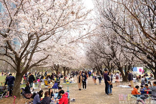 首爾林seoul forest (4)