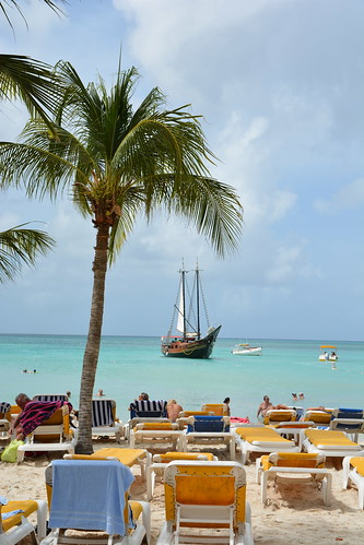 cruise caribbean vacation princesscruises royalprincess aruba moombabeach beach tree palmtree ship