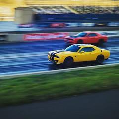 أسعد الله أيامكم باننق من حلبة باندي مير في دنفر  #فورت_كولنز #دنفر #car #cars #photooftheday #photography #photographer #photoshoot #denver #bandimere #bandimerespeedway #noco #foco #dodge #challenger #hellcat #hellcatchallenger #yellow #orange #dragrace